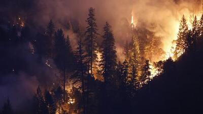 De norte a sur: los incendios más grandes de California