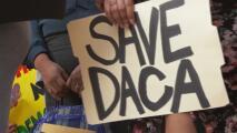 ¿Qué cambia con el segundo fallo judicial a favor de DACA?
