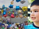 Sube a $450,000 la recompensa para hallar al hombre que mató al niño Aiden Leos en una autopista de California