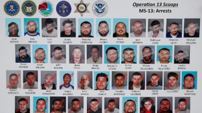 Inside the Mara Salvatrucha gang in Los Angeles: Leadership by committee, they kill each other and sell El Chapo's drugs