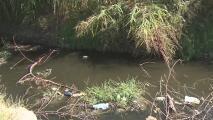 Autoridades piden precaución por agua estancada que puede propagar el virus del zika