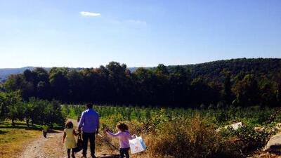 15 actividades de otoño para empezar a planificar desde ahora