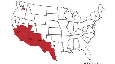 Mueren 200 personas al año por peligroso hongo común en California y Arizona