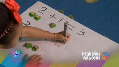 Pequeños y Valiosos Enfoque en las Matematicas