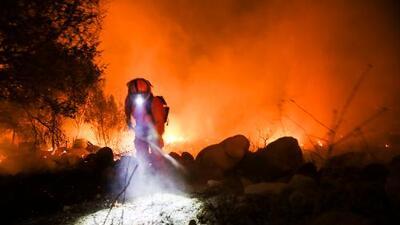 Incendios forestales: cómo luchar contra el fuego con ciencia y sin financiamiento