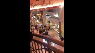 """Video desde el interior del Dolphin Mall: """"¿Están disparando? Yo oigo tiros"""""""