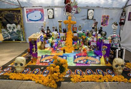 Y esto es parte de la importancia cultural de la flor en México dentro de uso como parte del Día de los Muertos; porque se dice que la pigmentación amarilla o anaranjada que tiene la flor, supuestamente evoca la imagen del Sol, que es lo que guía a las almas en su día de regreso a nuestro mundo.
