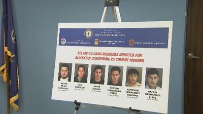Caen seis presuntos miembros del MS-13 en conexión con dos asesinatos en Long Island