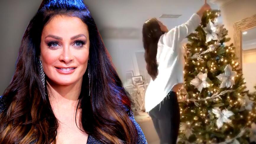 Dayanara Torres tuvo una fuerte razón para romper la tradición familiar al armar su árbol de Navidad