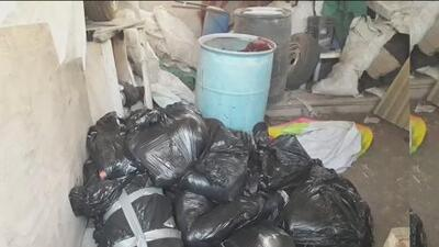 14 cuerpos desmembrados en 18 bolsas plásticas: otro macabro hallazgo en una finca en Jalisco