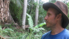 """Liberan al científico cubano condenado a un año de prisión por llamar """"guardia rural"""" a un guardabosques"""
