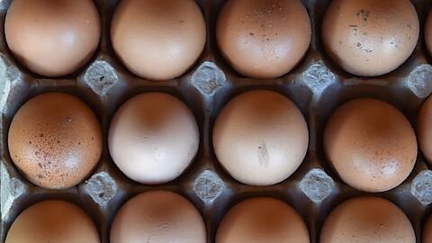 Retiran del mercado más de 200 millones de huevos por posible contaminación con salmonela