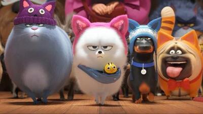 """Mascotas, superpoderes y """"papi chulos"""" encabezan la lista de las películas este fin de semana"""