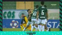 Compañeros de equipo se agarraron a golpes tras ganar partido en Brasil
