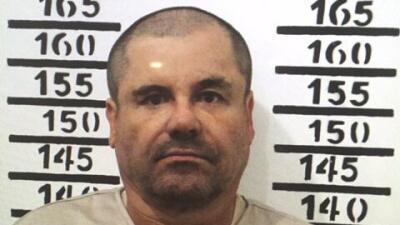 """Decomisan aves exóticas en rancho ligado a """"El Chapo"""""""