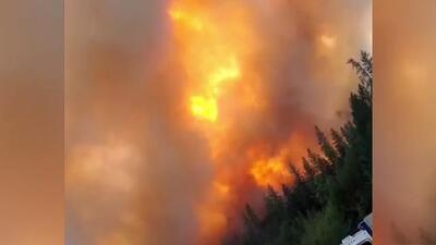 Bomberos combaten el incendio Delta en el norte de California