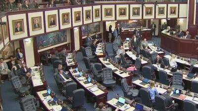 Estas son las leyes más importantes que entran en vigor a partir del 1 de julio en Florida