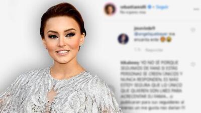 Así respondió Angelique Boyer a los ataques de una seguidora de Sebastián Rulli en Instagram