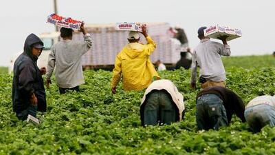 Un emprendedor lucha por llevar latinos de los campos de fresas a la industria tecno