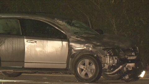 Un jinete y su caballo murieron en un trágico accidente en Houston: fueron impactados por un auto