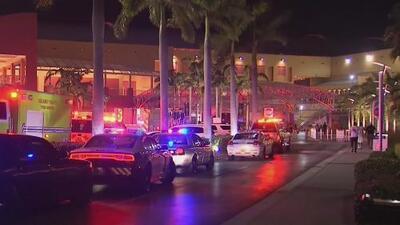 Pelea entre dos personas genera falsa alarma de tiroteo en Dolphin Mall, Florida