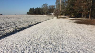 Hace tanto frío que llegó a nevar en Florida