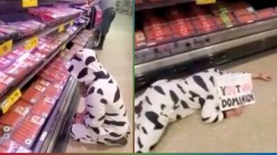(Video) Vestida de vaca, mujer vegana protesta en un supermercado
