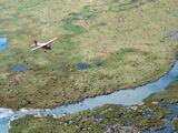 El gobierno de Estados Unidos aprueba buscar petróleo en un refugio silvestre de Alaska