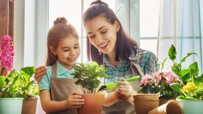 Consejos para decorar tu hogar en esta primavera