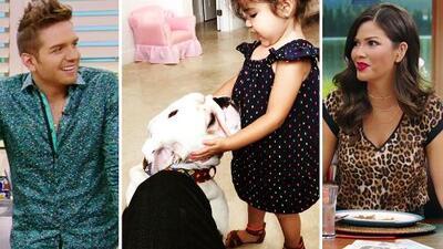 Baby Giulietta está loca de amor por Benito, el perro de su padrino El Dasa 😍