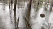 Lluvias causan inundaciones en Lumberton por crecida del río Lumber