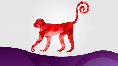 Características del Mono en el Horóscopo chino