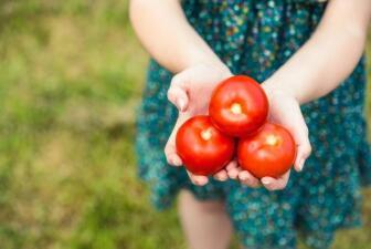 Los milagros del tomate en la salud