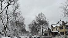 Después de más de 24 horas de nieve por tormenta invernal la ciudad de Chicago y los suburbios ahora le toca palear la nieve y preparase para una nueva semana.