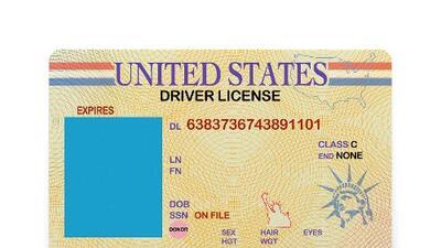 Por qué la oficina del censo está pidiendo a los estados datos de licencias de conducir: esto dicen los expertos