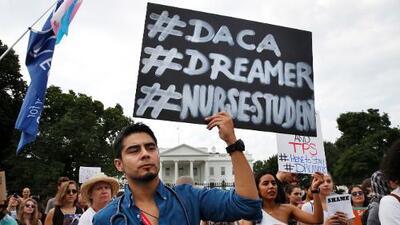 Universidad de Harvard: éxitos de DACA son indiscutibles, pero los 'dreamers' necesitan una solución permanente