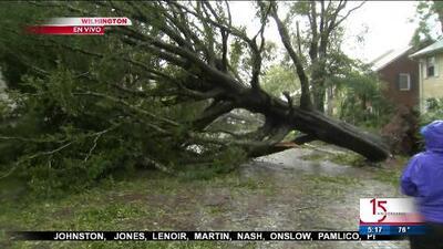Florence provoca caos y caída de árboles en Wilmington