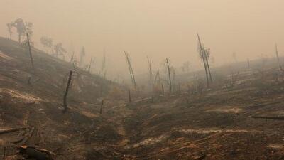 En un minuto: Buscan a siete desaparecidos en los incendios de California