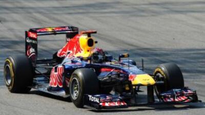 Prometen a Vettel su 'Kinky Kylie' si es campeón de F1