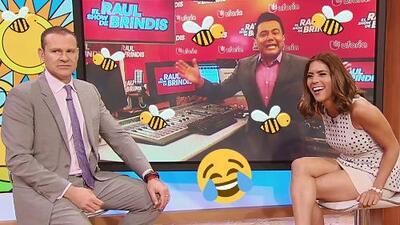 ¿Sabes qué hace una abeja en un gimnasio? Escucha el chiste de Raúl