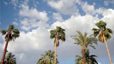 Prevén un lunes con alta nubosidad y fuertes vientos en Los Ángeles