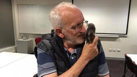 """""""Ella también me extrañó"""": así fue el reencuentro entre un indigente y su rata mascota"""