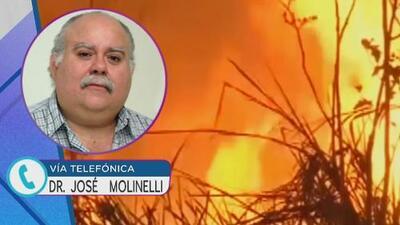 Lo que debes saber sobre los incendios en el Amazonas