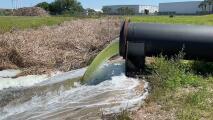 """El colapso """"inminente"""" de un estanque de aguas residuales provoca la evacuación de residentes en un condado de Florida"""
