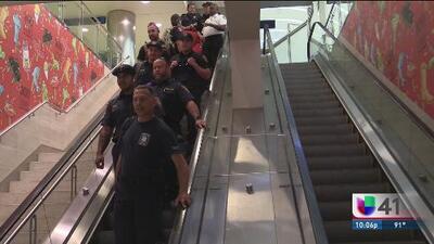 Bomberos regresan tras combatir incendios forestales en California