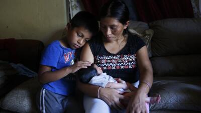 La vida de estos hispanos agricultores de Florida arrasada por el huracán (FOTOS)