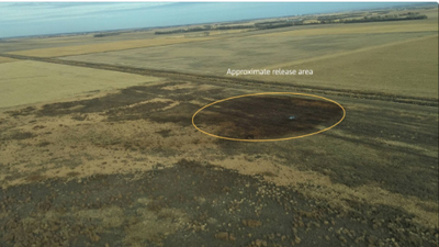 Daño en oleoducto de Dakota del Sur causa derrame de 5,000 barriles de petróleo