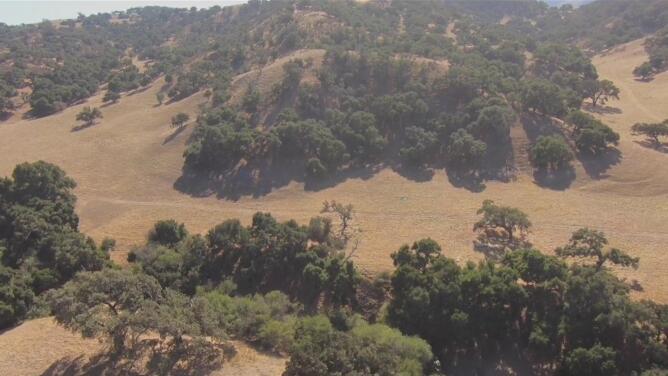 Por qué se está hundiendo el Valle de San Joaquín, una de las zonas agrícolas más importantes de EEUU