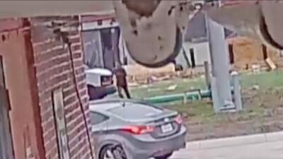 Obrero hispano defiende a su padre en un robo y el asaltante le da un tiro en la cara