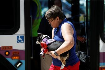Proteger los hogares y escapar: así se preparan los residentes de las Carolinas y Virginia para la llegada de Florence (fotos)
